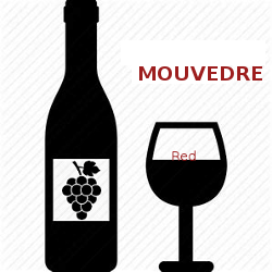 Mouvedre Wines, Learn About Mouvedre Wines